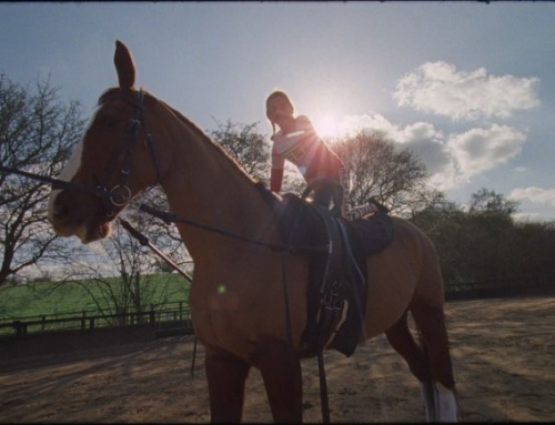 NEW WORK for @stellakids @stellamccartney | The Spirit of Horse Riding | Big tha…